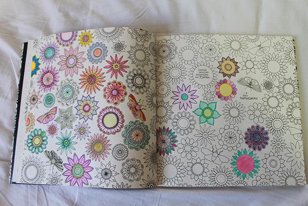 Livros de colorir para adultos